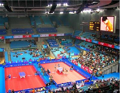 如何借助世界級選手作乒乓訓練?